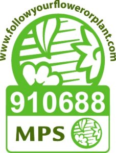 boomkwekerij de jong MPS